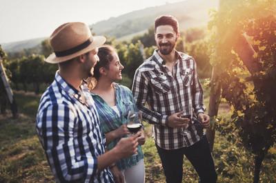 winetrends.jpg